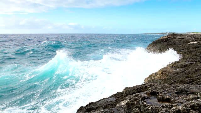 Ocean wave splash on the reef video