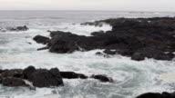 Ocean Waves Black Rocks 1 video