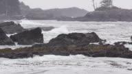 Ocean Waves Black Rocks Shoreline video