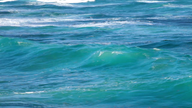 Ocean waves near shore video