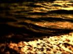 Ocean Waves on water's edge video