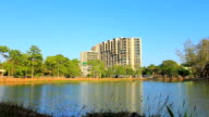 Office Building and nature park video