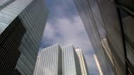 Office buildings. Timelapse. video