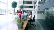 Office or hotel reception in HD video