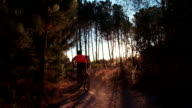 Off-road mountain biker on a forest back road in wilderness video