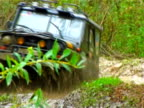 Offroad racing. Driving through the  wet forest video