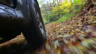 Off-Road Vehicle Driving Through Autumn Forest video