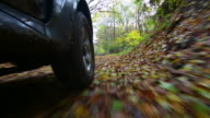 POV Off-road Vehicle Riding Through Autumn Forest video