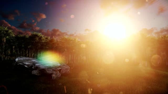 Oil Palm Tree Plantation against beautiful sunrise, tilt video