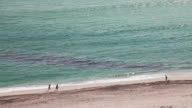 Oil spill on beach video