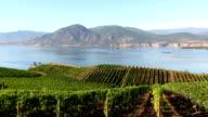okanagan valley naramata winery vineyard video