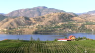 okanagan valley vineyard penticton video