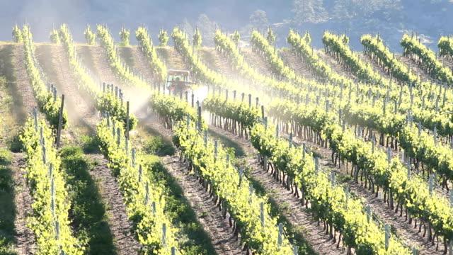 Okanagan Vineyard Spraying Tractor video