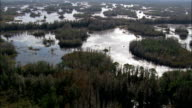 Okefenokee Swamp  - Aerial View - Georgia,  Ware County,  United States video