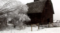 Old barn and frosty trees-pan video