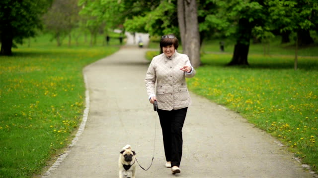 Old Beautiful Woman with Little Dog is Walking Towards Her Adult Daughter. Two Brunette Sisters are Hugging Their Mom in the Park in Spring video