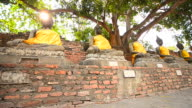 Old Buddha Statues at Historical Park of Ayutthaya, Thailand video