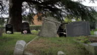Old English Churchyard With Old Gravestones video