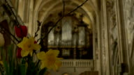 Old Gothic Church Organ video