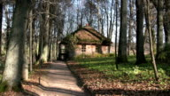 Old house in autumn forest video