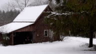 Old Maine barn with falling snow video