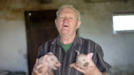 Old man holds two little pigs on the hands, smiling and singing to them. FullHD video