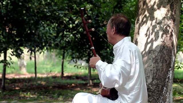 old man playing chinese traditional erhu in the park video