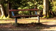 Old Park Bench (HD 1080p30) video