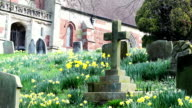 Old Pretty Headstones In Spring video
