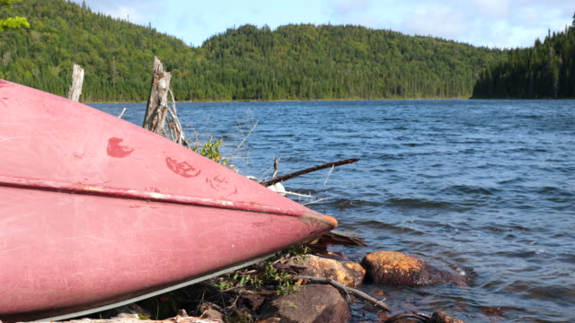 Old Red Canoe on Lake Shore in Nature Forest video