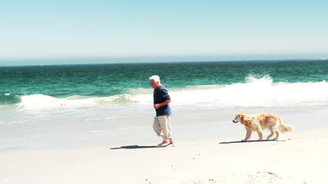 Old retired man running with dog video