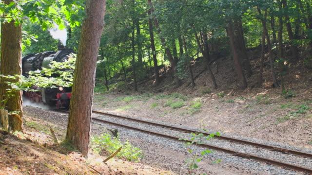 Old steam locomotive pulling railroad passenger cars video