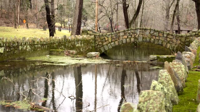Old stone bridge covered in moss video