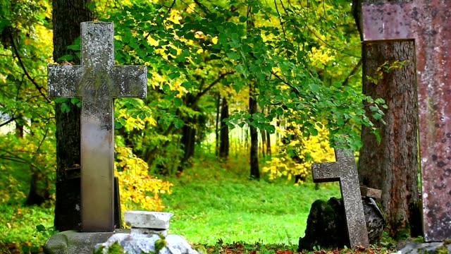 Old stone crosses on graves in autumn video