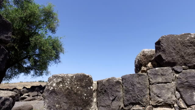 Old Stone Wall Ruins in Israel video