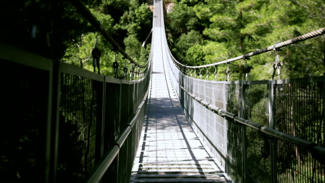 Old suspension bridge in the forest video