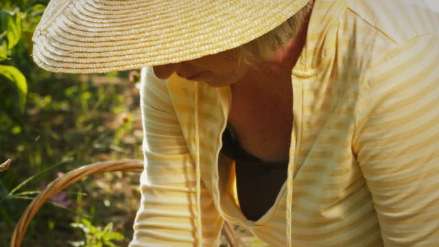 Old woman weeding. video