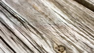 Old wood macro video