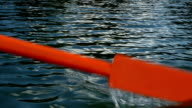 Old wooden paddle bounces into lake water video