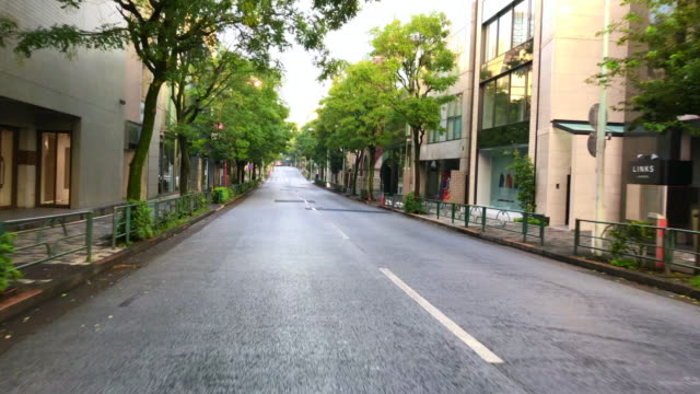 Omotesando Aoyama Tokyo of the road in the morning video