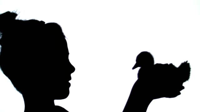 On a white background black outlines, figures, silhouettes of a profile of a little girl and a small duckling in her hands. The girl is playing with a duckling video