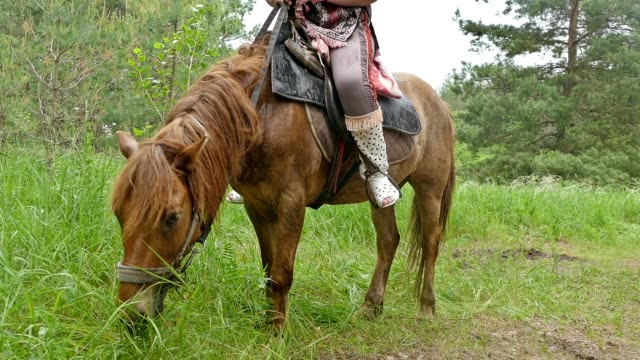on grazing horse rider sits slow motion video video