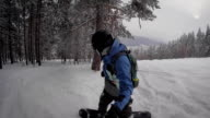 On the video frame is seen as a man, dressed in warm winter gear quickly and confidently rolled with snowy mountains on a black snowboarding, driving between tall pine trees video