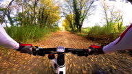 Onboard camera, Cyclist riding mountain bike in the wood. Pov original point of view. Video from action cam video