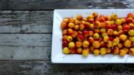 One Dish Fresh Ripe Organic Crabapple video