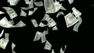 One Hundred USD Dollar Bills Falling On Black Background video