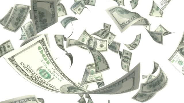 One Hundred USD Dollar Bills Falling On White Background video
