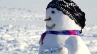 One of the many snowman on the road side video