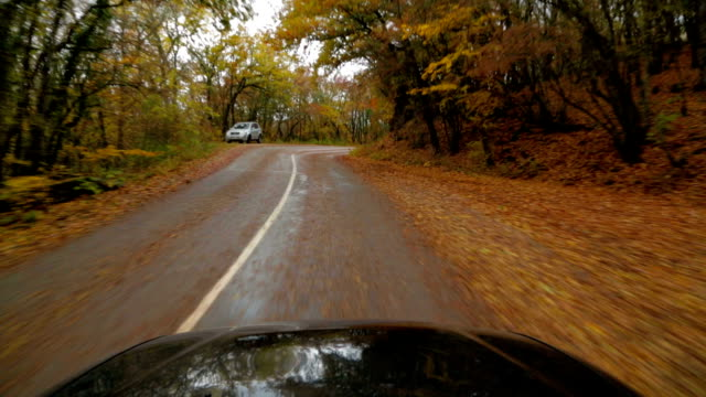 One Passenger Car Driving Fast Along Road In Autumn Forest video