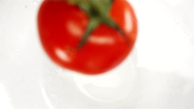 One red tomato falling into water with splash video